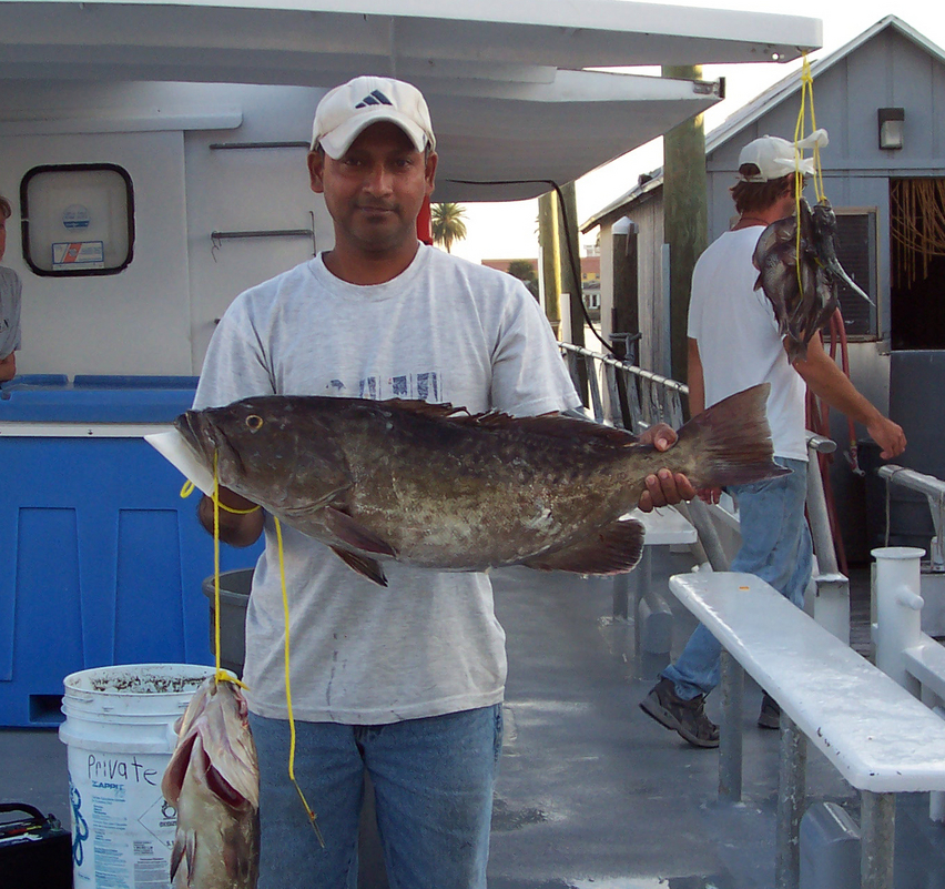 Photos of fish caught deep sea fishing on queen fleet for Queen fleet deep sea fishing clearwater fl